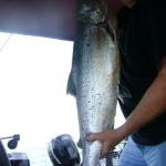Lake Ontario West & Niagara Fishing Charters